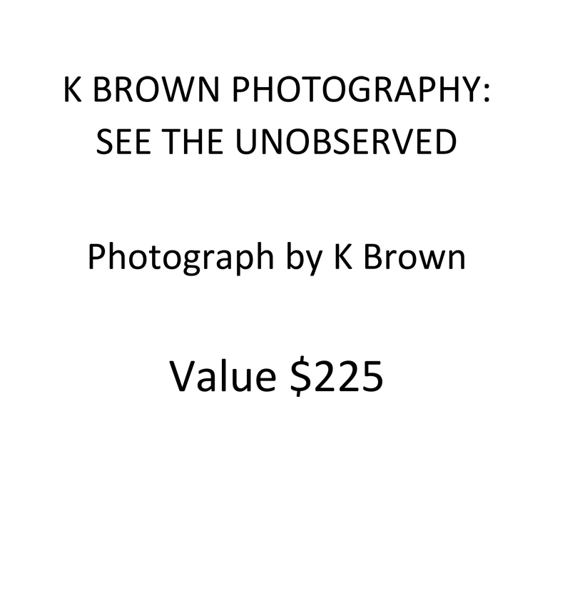 k-brown-photography-placard